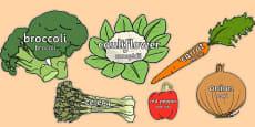 Vegetable Words on Vegetables Romanian Translation