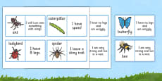 Minibeasts Description Loop Cards