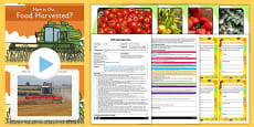 Harvest Food Tasting EYFS Adult Input Plan And Resource Pack