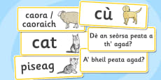 Scottish Gaelic Pets Topic Word Cards