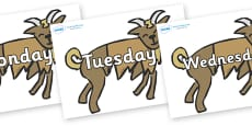 Days of the Week on Billy Goats Gruff