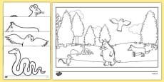 The Gruffalo Colouring Sheets
