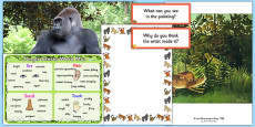 Rainforest Creative Writing Pack