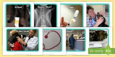 صور في العيادة البيطرية للعرض