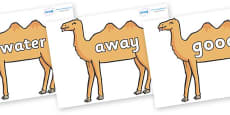 Next 200 Common Words on Camels