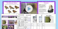 Evolution and Adaptation Year 6 Lesson Teaching PowerPoint