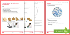 Preparing Onion Cell Microscope Slide Investigation Instruction Sheet Print-Out