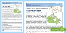 Canada's Arctic: Climate Change and how it Affects the Polar Bear Fact File
