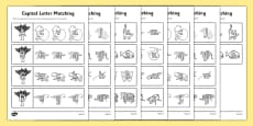 Rainforest Themed Capital Letter Matching Activity Sheet