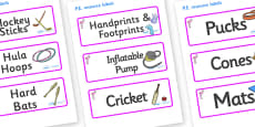 Flamingo Themed Editable PE Resource Labels