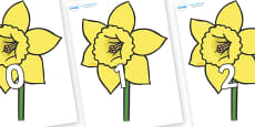 Numbers 0-31 on Daffodils
