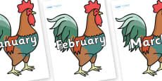 Months of the Year on Rooster