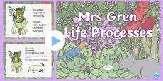 * NEW * Mrs Gren Life Processes PowerPoint