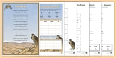 * NEW * The Falcon Poem Activity Pack