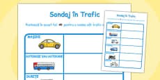 Traffic Survey Activity Sheet Romanian