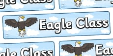 Eagle Class Display Banner