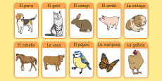 Farm Animals in Spanish Flashcards