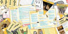 Safari KS1 Lesson Plan Ideas and Resource Pack