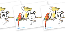 Phoneme Set on Pets on a Perch to Support Teaching on The Great Pet Sale
