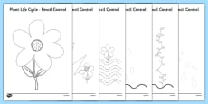 Plant Life Cycles Pencil Control Sheets