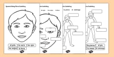 Spanish Body Parts Labelling Worksheet