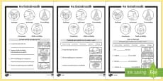 * NEW * An Geimhreadh 1st and 2nd Class Differentiated Reading Comprehension Activity Gaeilge