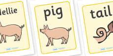 Display Posters to Support Teaching on Pig in the Pond