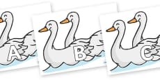 A-Z Alphabet on Swans