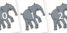 Numbers 0-31 on Trunky The Elephant to Support Teaching on The Enormous Crocodile