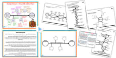 Planning Your Writing (Non-Fiction) Teaching Ideas and Resource Pack