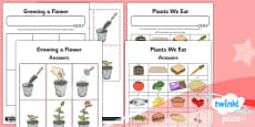 PlanIt - Science Year 1 - Plants Unit Home Learning Tasks