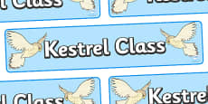 Kestrel Class Display Banner