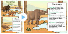 Stone Age Animals Information PowerPoint