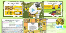 PlanIt - Science Year 5 - Scientists and Inventors Lesson 5: Eva Crane Lesson Pack