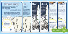 Arctic Animal Display Facts Posters Romanian/English