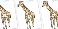 Phase 2 Phonemes on Giraffe