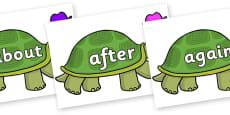 KS1 Keywords on Tortoise