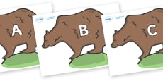 A-Z Alphabet on Bears
