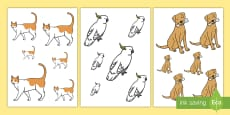 Pets Size Ordering