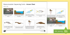 Bioaccumulation Sequencing Cards