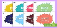 * NEW * Colour Display Posters English/Polish