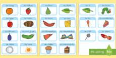 Wort und Bildkarten für das Unterrichtsthema: Die Kleine Raupe Nimmersatt