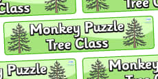 Monkey Puzzle Tree Themed Classroom Display Banner