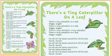 Tiny Caterpillar Rhyme Poster