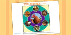 Life Cycle of a Chicken Jigsaw