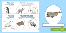 Polar Animal Finger Puppets English/Polish