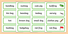 Two Syllable Final G Sound Word Cards