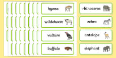 Africa Topic Word Cards