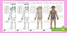 * NEW * Ficha de actividad: Las partes del cuerpo y los sentidos