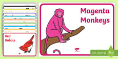 Coloured Animal Reading Group Display Labels